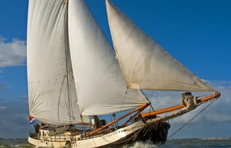 Cruise Dina