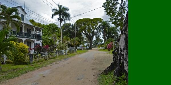Reis Guyana's